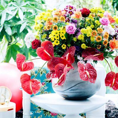 Voeg kleur toe aan je interieur met chrysant