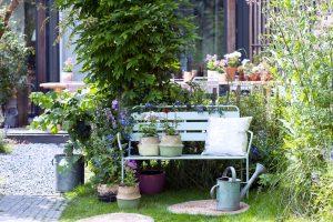 Tuinplant van de maand juni: zomerboeket uit eigen tuin!