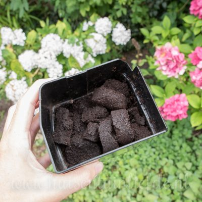 3x plantenvoeding uit je keuken (bespaartip!)